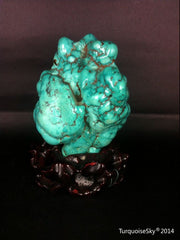 Natural blue turquoise stone with redwood stand 492.0 grams