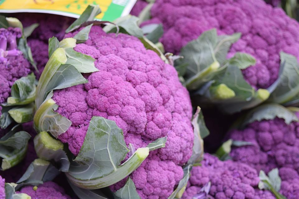 How to Grow & Harvest : Cauliflower | Healthy Garden Co