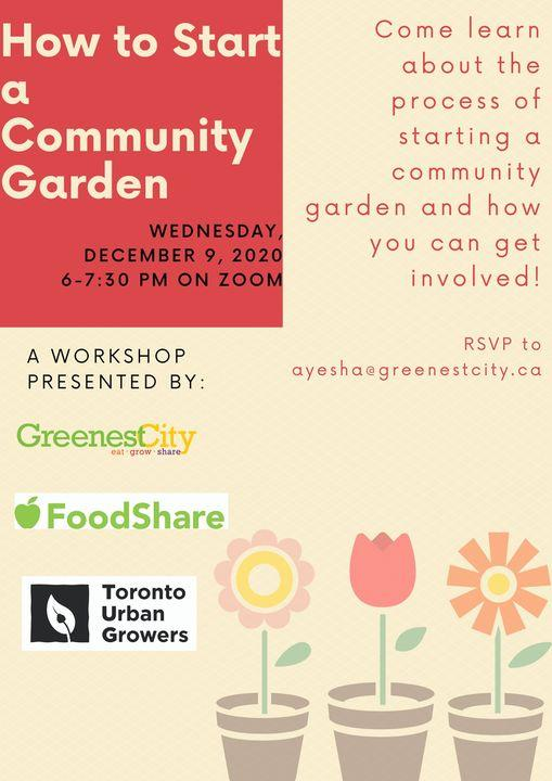 How to start an urban community vegetable garden | Healthy Garden Co