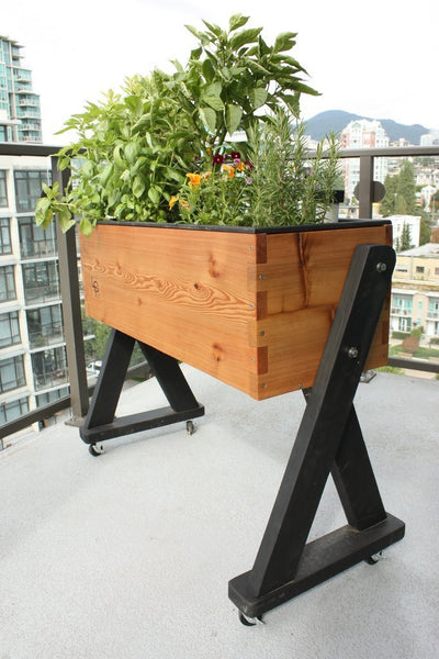 Mobile / Elevated Self-Watering Planter - HighRise - Healthy Garden Co