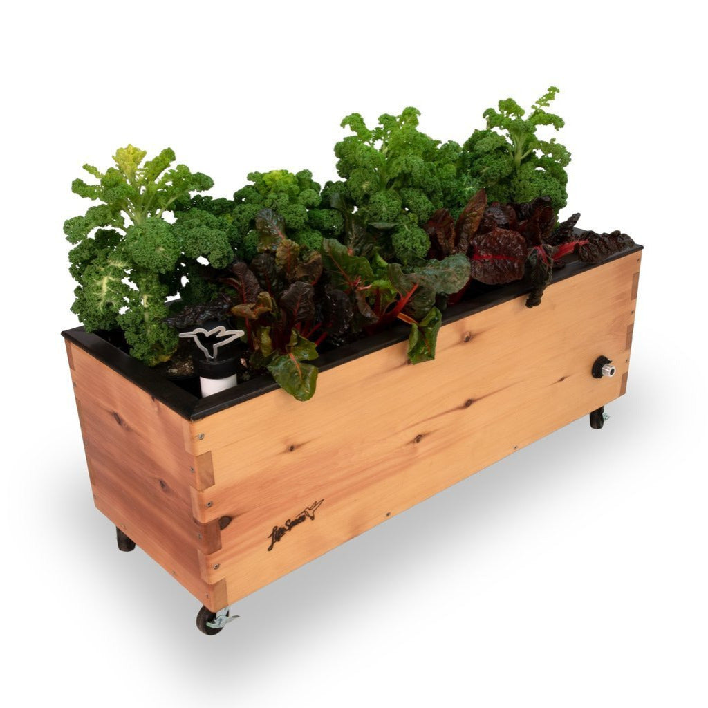 Mobile Self-Watering Planter - LowRider - Healthy Garden Co