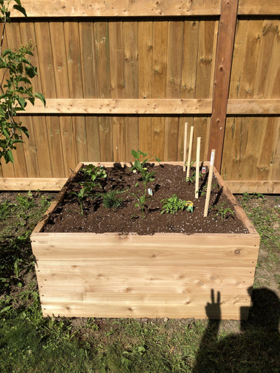 Raised Garden Bed Installation - Healthy Garden Co