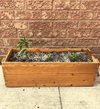 Vintage Planter Box ~ LIMITED EDITION - Healthy Garden Co