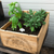 Wine Box Herb Garden - Healthy Garden Co