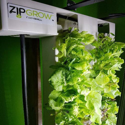ZipGrow 2-Tower Farm Wall™ - Healthy Garden Co