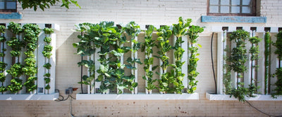 ZipGrow 8-Tower Farm Wall™ - Healthy Garden Co