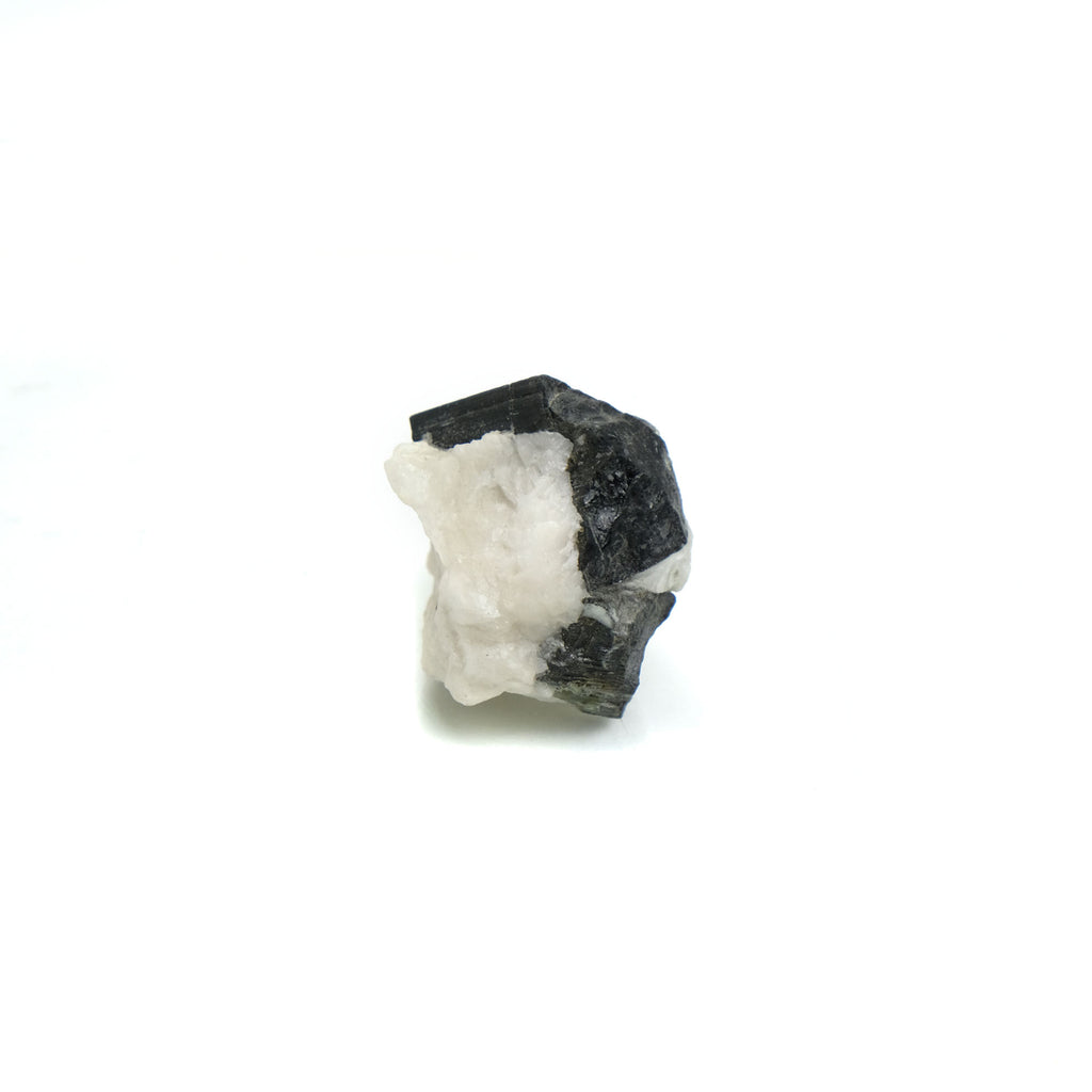 Black Tourmaline Crystals in Quartz Specimen #84
