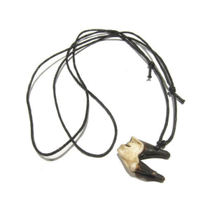 Elk Tooth Necklace