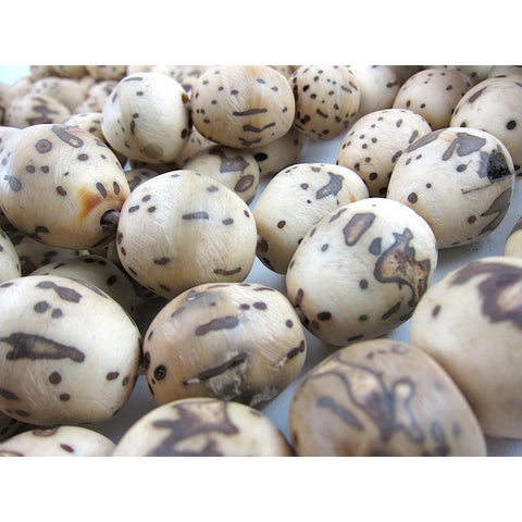 Kenya XL Doum Nut Beads 2