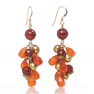 Carnelian Earrings with Gold Filled French Ear Wires