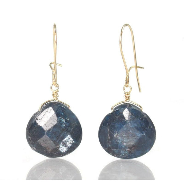Kyanite Earrings with Gold Filled Kidney Ear Wires