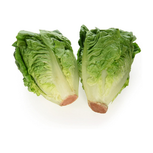 Gem Lettuce (2 Pack)