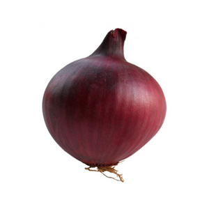 Red Onion (Single)