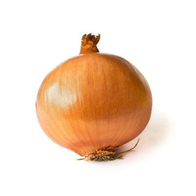 Brown Onion (Single)