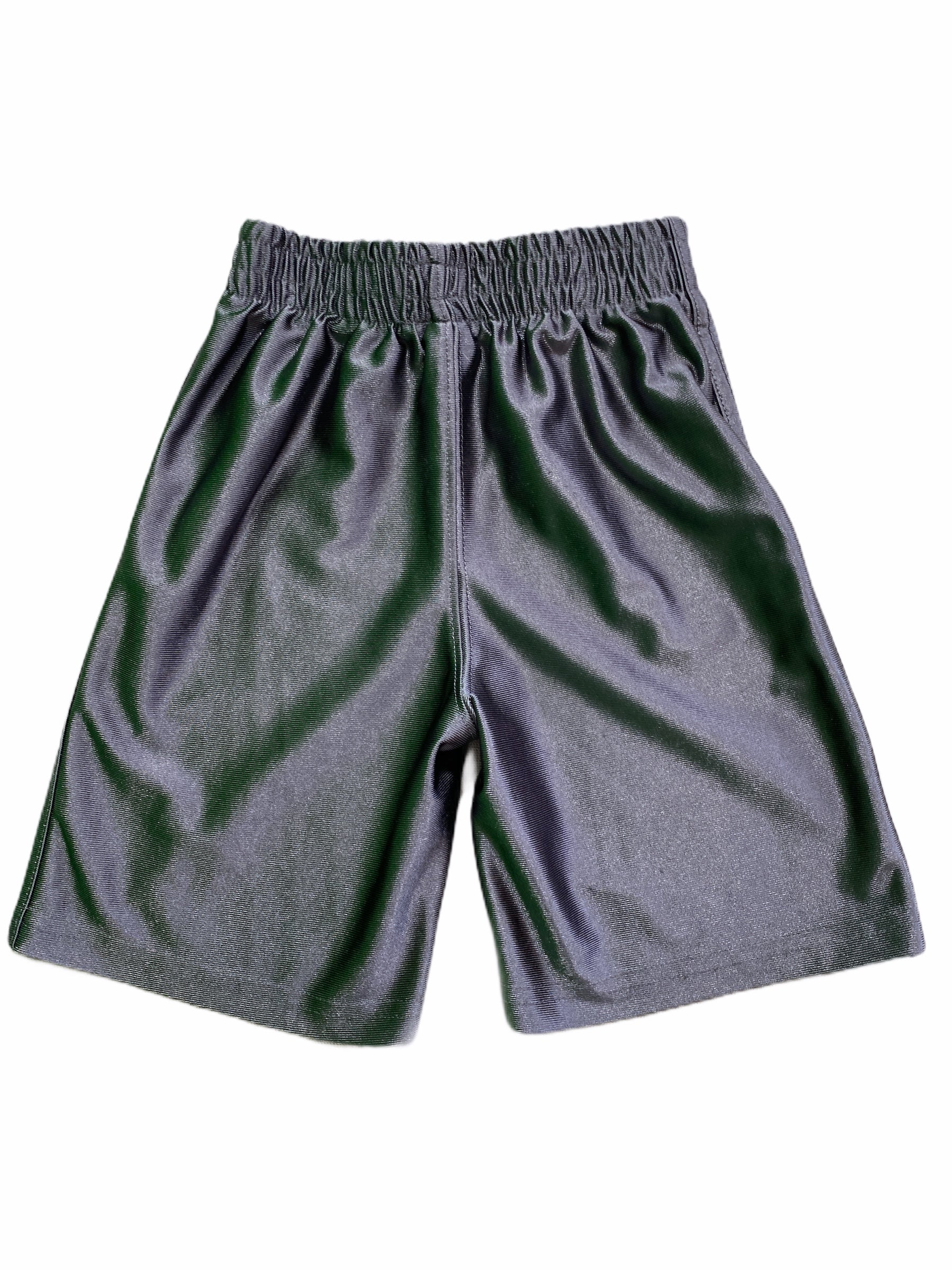Place Gray Athletic Shorts (3T Boys)