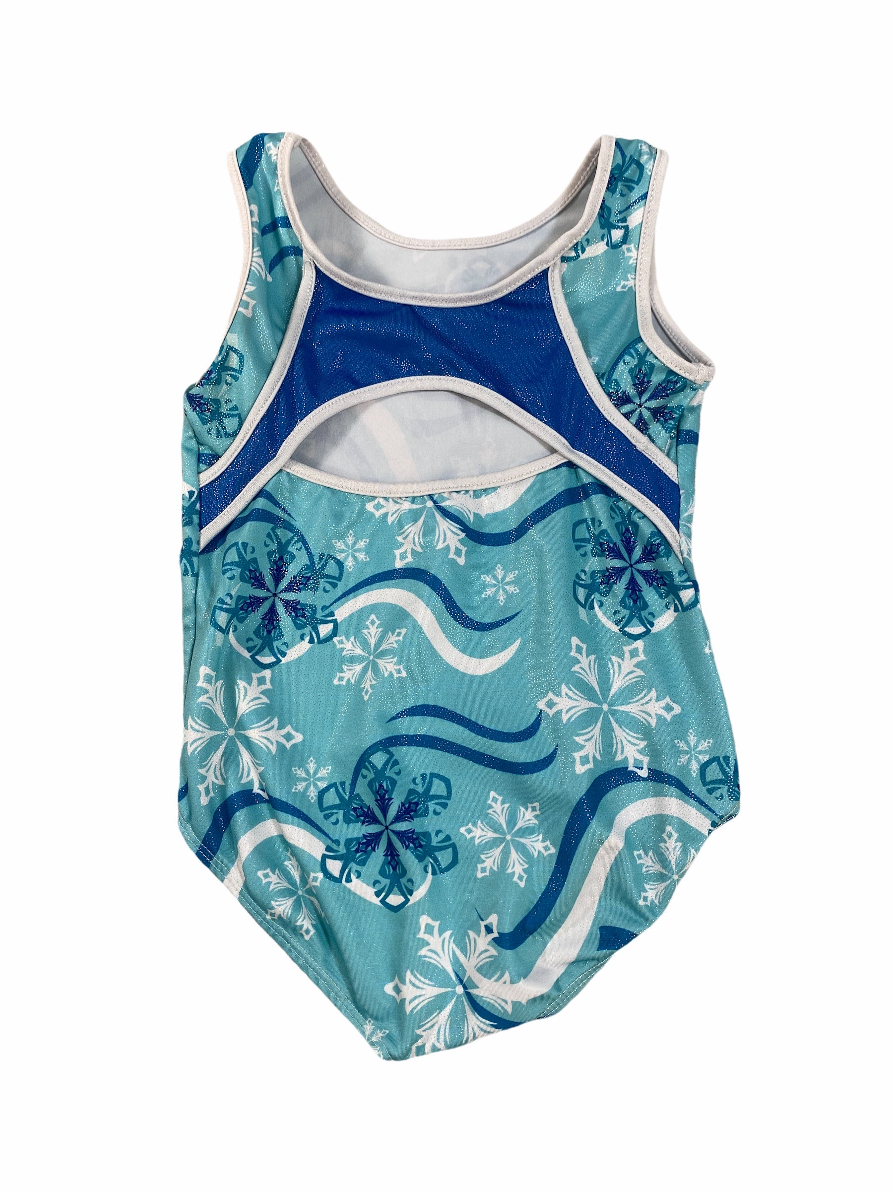 Snowflake Leotard (6 Girls)