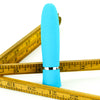 Pleasure Works Pleasurette Vibrator Teal