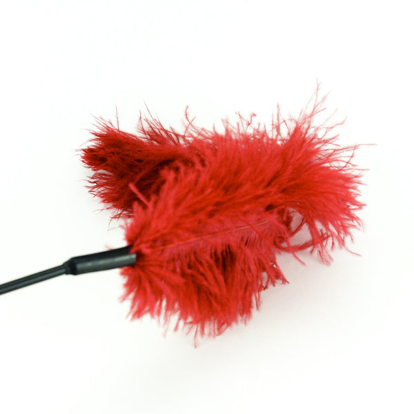 Sportsheets Ostrich Feather Tickler Burgundy