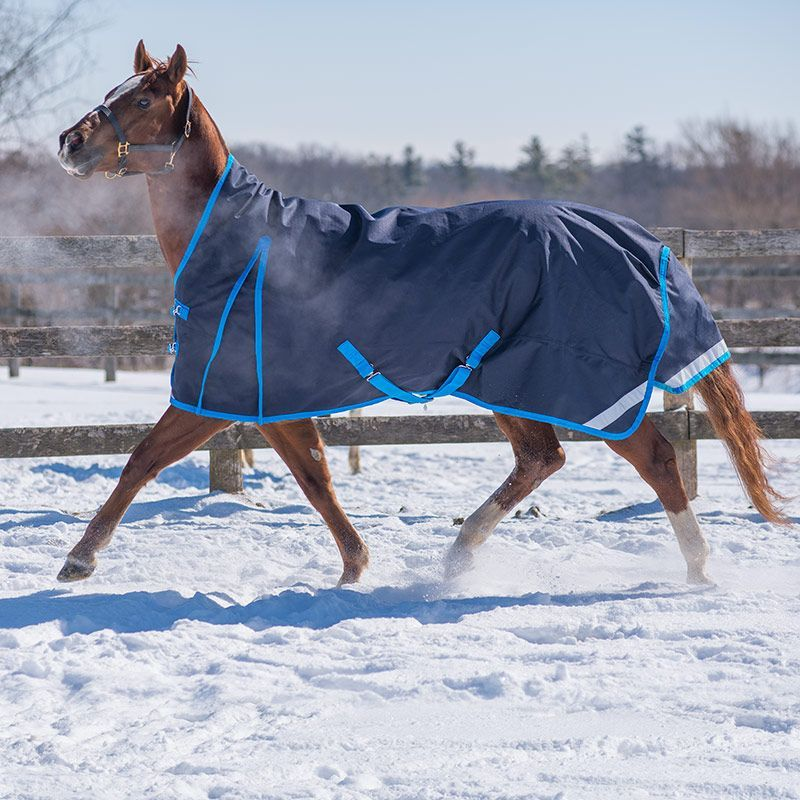Canadian Horsewear Denali Reflect Turnout 300gm