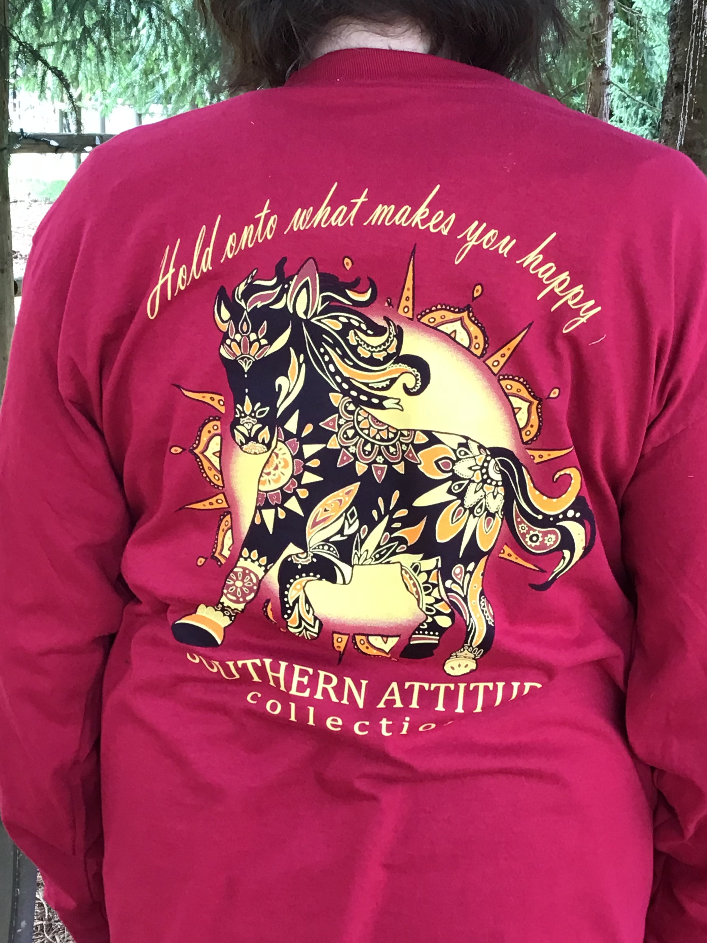 Country life Long sleeve Painted pony southern attitude Hold on to what makes you happy shirt
