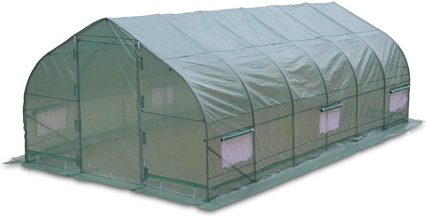 Walk-in Peak Roof Greenhouse with Roll-Up Windows 10x20