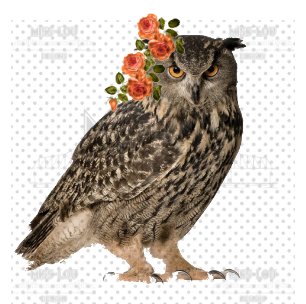 Owl with Flowers Digital Download