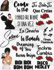 Selena Quintanilla Fan Sheet Waterslide