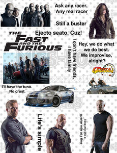 Fast and the Furious Fan Sheet Waterslide