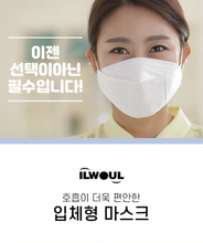 Load image into Gallery viewer, Korean Mask (Ilwoul)