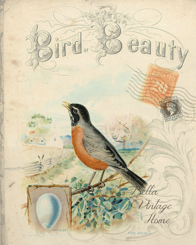 "Bird Tea Towel Robin ""Bird Beauty"" - BELLAVINTAGEHOME"