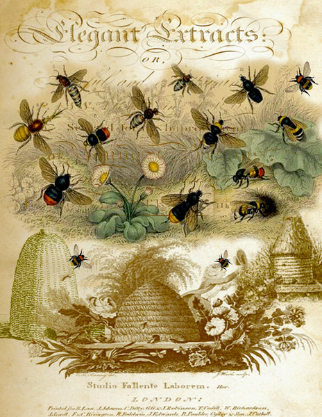 Insect Tea  Towel Bee Skeps
