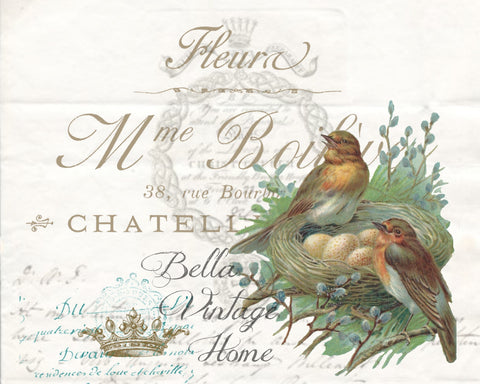 Botanical Birds with Nest Print, Pillow, Note Cards, Tea Towel, Digital Download - BELLAVINTAGEHOME