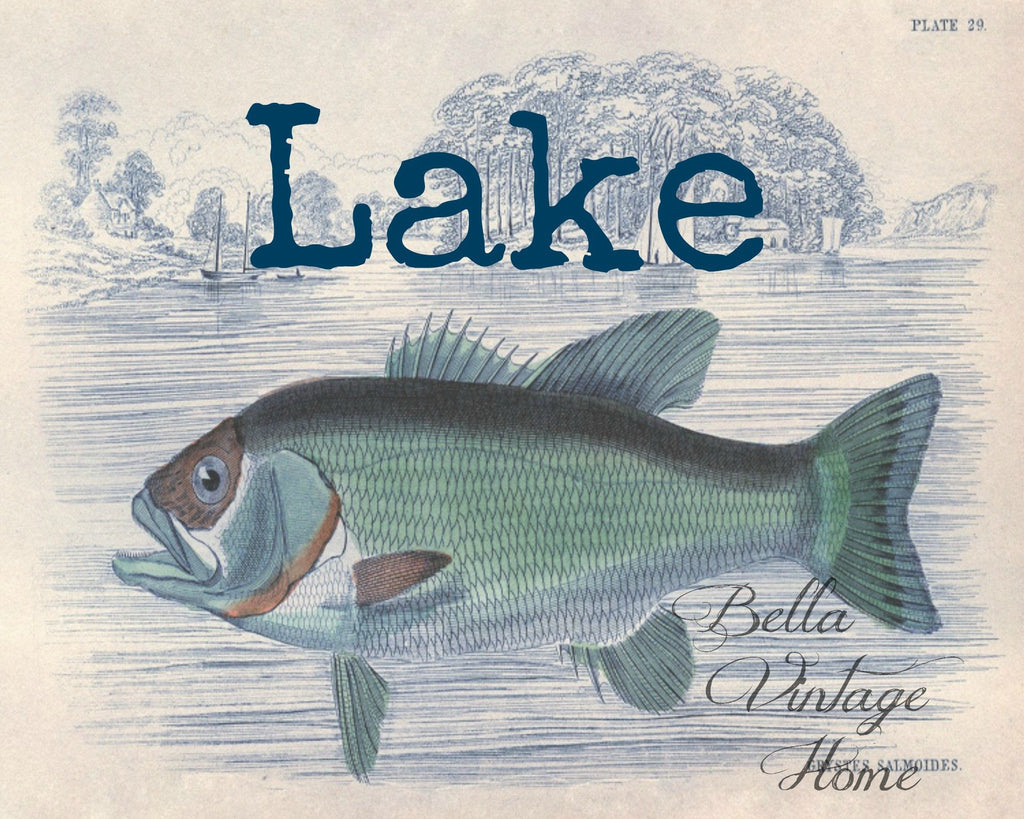 Blue Fish Lake Print,  Pillow, Note Cards, Tea Towel, Digital Download - BELLAVINTAGEHOME
