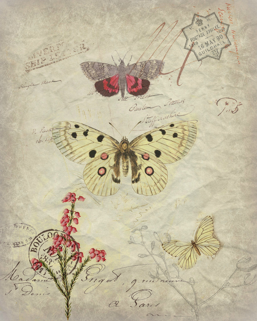 Botanical Pink and Ivory Butterfly Print, Pillow, Note Cards, Tea Towel
