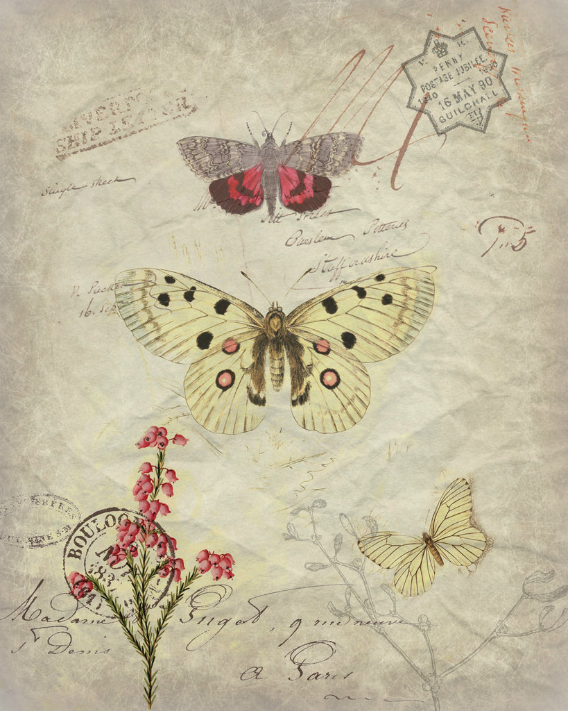 Insect Tea  Towel  Pink & Ivory Butterfly - BELLAVINTAGEHOME
