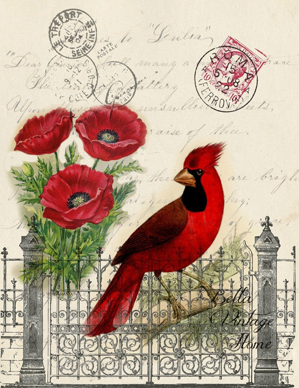 Botanical Cardinal Print, Pillow, Note Cards, Tea Towel