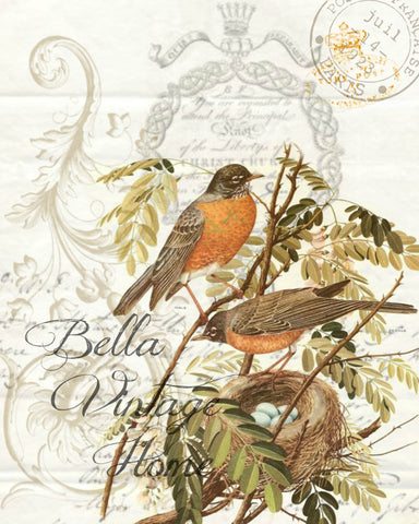 Botanical Double Robin Print, Pillow, Note Cards, Tea Towel - BELLAVINTAGEHOME