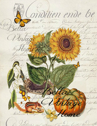 Sunflower  Botanical Print,  Pillow, Note Cards, Tea Towel, Digital Download - BELLAVINTAGEHOME