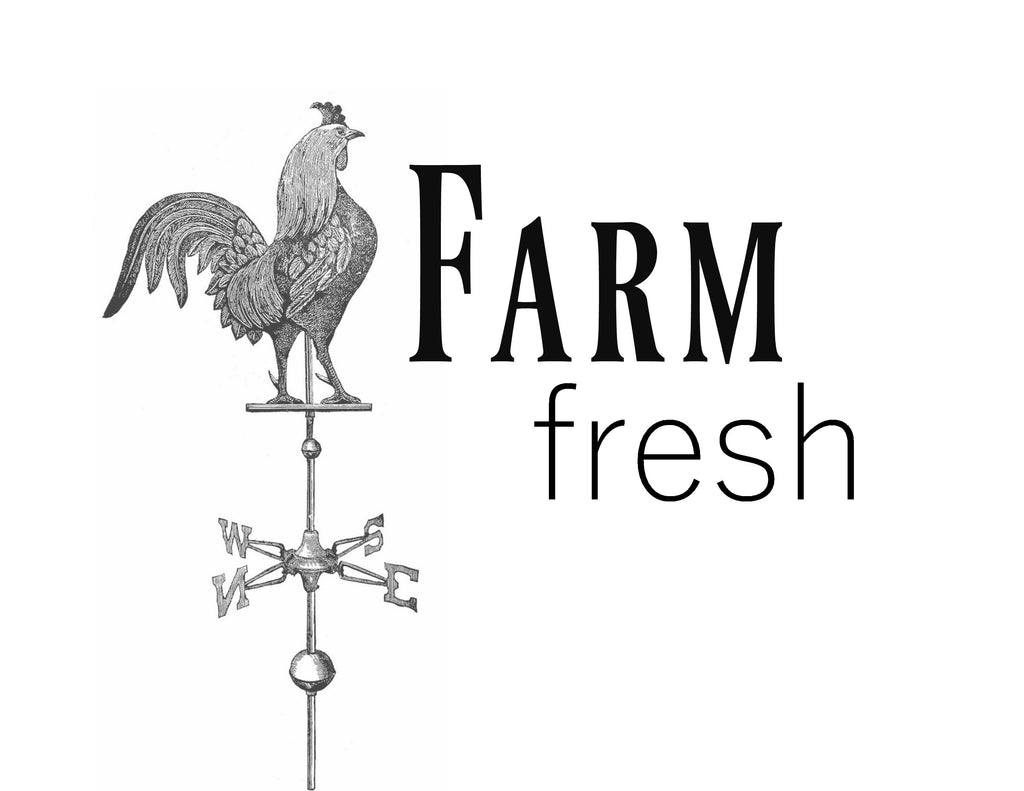 Farm Fresh Print,  Pillow, Note Cards< Tea Towel