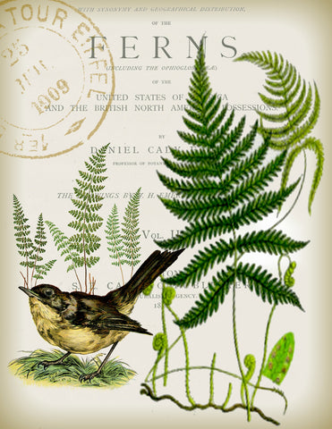 Bird & Fern Tea Towel