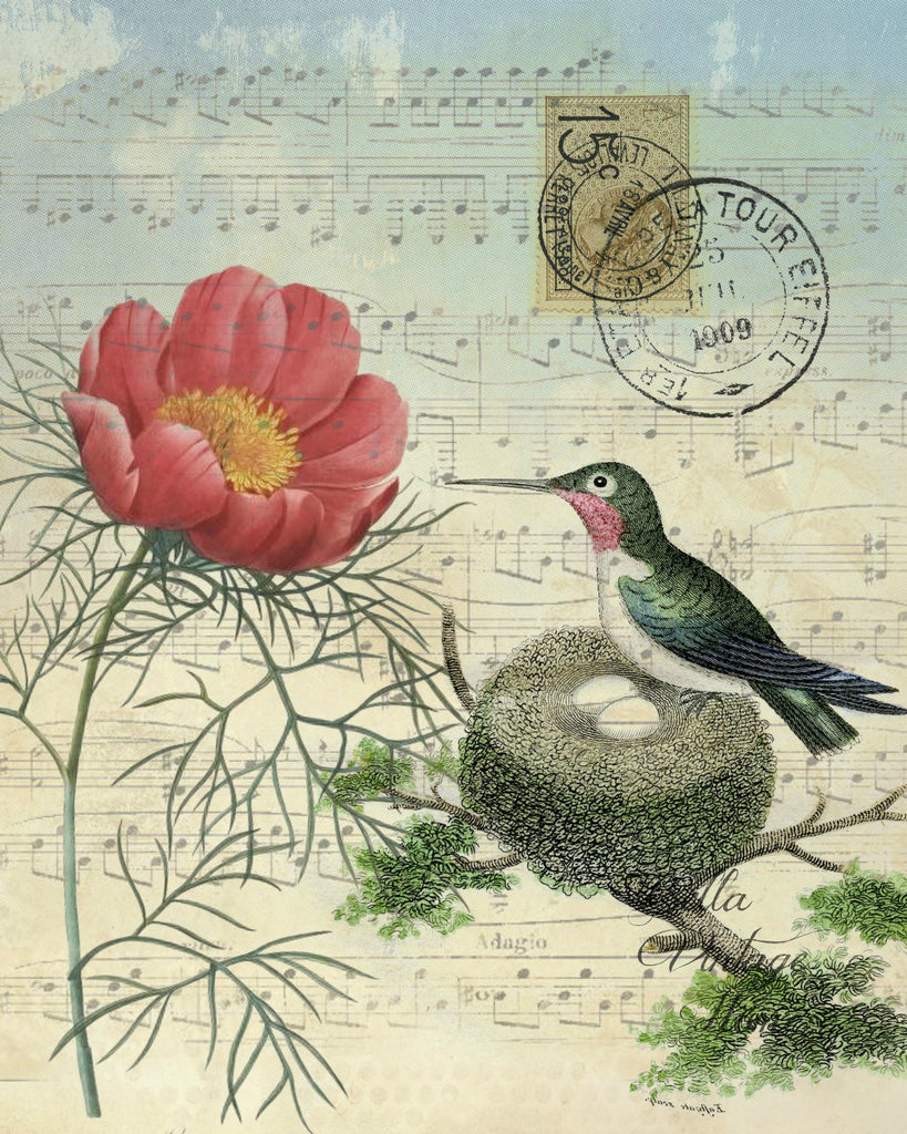 Botanical Hummingbird with Nest Print, Pillow, Note Cards, Tea Towel, Digital Download - BELLAVINTAGEHOME