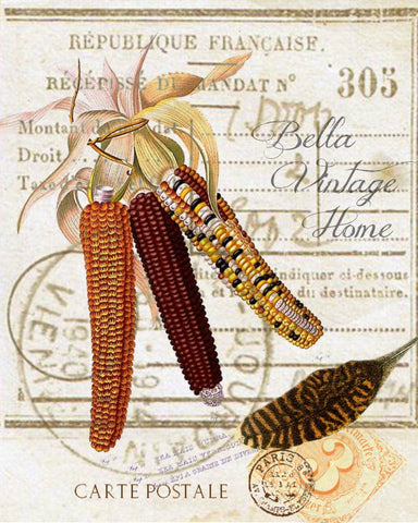 Harvest Indian Corn  Botanical Print,  Pillow, Note Cards, Tea Towel, Digital Download - BELLAVINTAGEHOME