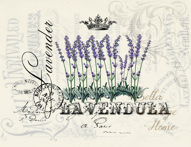 French Lavender  Print, Pillow, Note Cards, Tea Towel, Digital Download - BELLAVINTAGEHOME