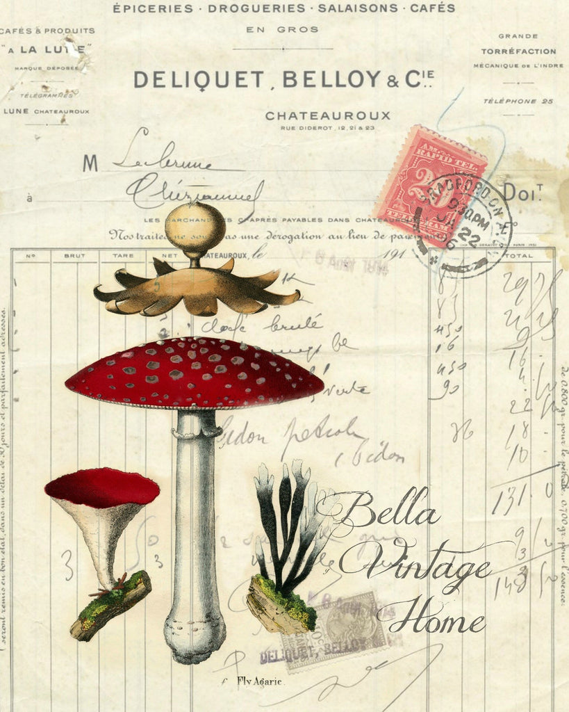 Botanical  Mushrooms I Print, Pillow, Note Cards, Tea Towel, Digital Download - BELLAVINTAGEHOME