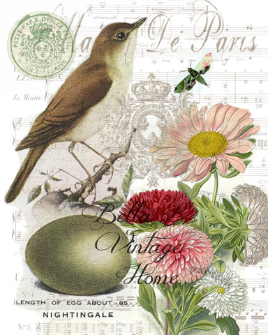 Botanical Nightingale  Bird, Pillow, Note Cards