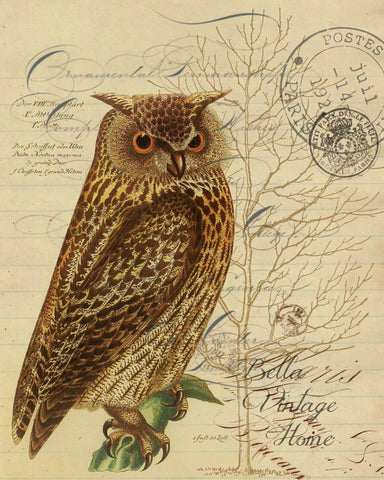 Harvest Owl Botanical Print, Pillow, Note Cards