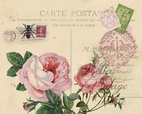 Botanical Pink Roses Carte Postale Print, Pillow, Note Cards, Tea Towel