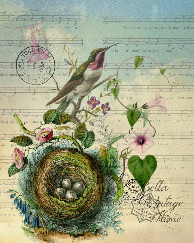 Botanical Purple  Hummingbird with Nest Print, Pillow, Note Cards, Tea Towel, Digital Download - BELLAVINTAGEHOME