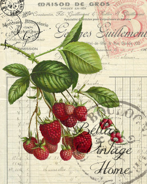Botanical   Red Raspberry Print,  Pillow, Note Cards, Tea Towel, Digital Download - BELLAVINTAGEHOME