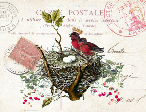 Red Bird Carte Postale  Print, Pillow, Notecards, Tea Towel, Digital Download - BELLAVINTAGEHOME